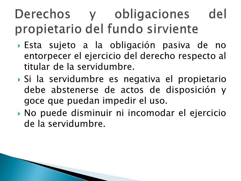 Derechos y obligaciones del propietario del fundo sirviente