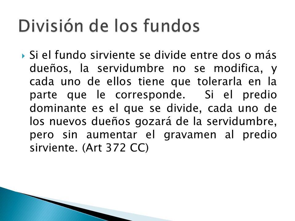 División de los fundos