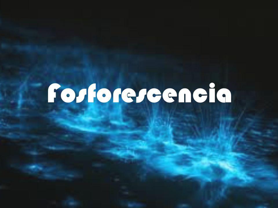 Fosforescencia