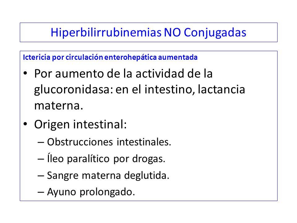 Hiperbilirrubinemias NO Conjugadas