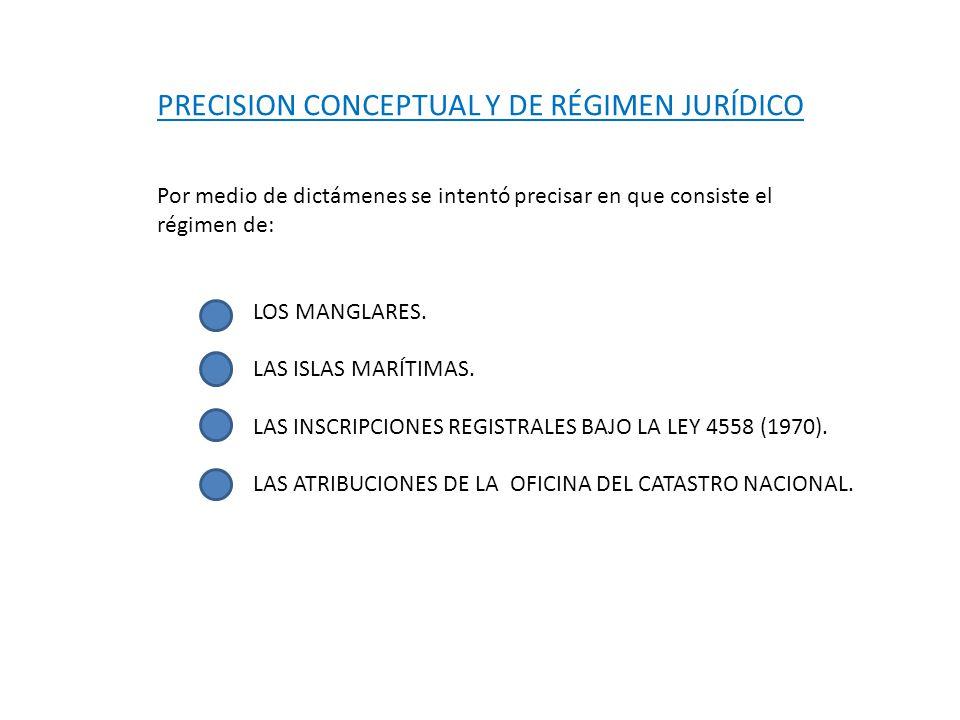 PRECISION CONCEPTUAL Y DE RÉGIMEN JURÍDICO