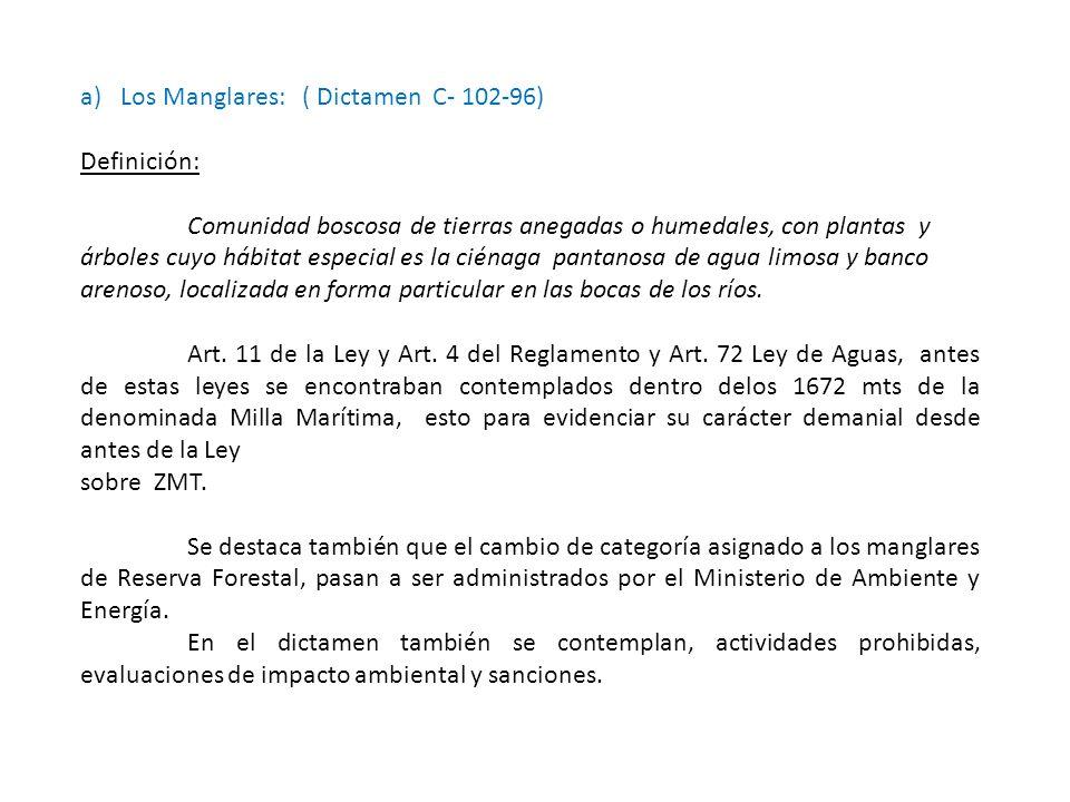 Los Manglares: ( Dictamen C- 102-96)
