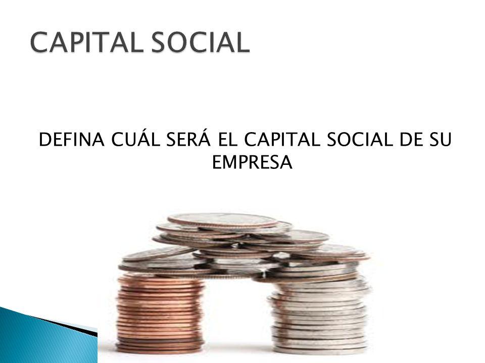 DEFINA CUÁL SERÁ EL CAPITAL SOCIAL DE SU EMPRESA