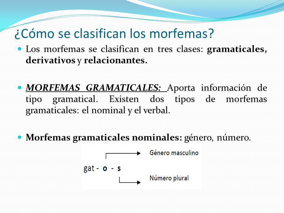 ¿Cómo se clasifican los morfemas