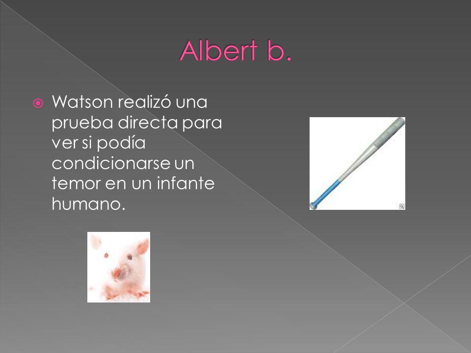 Albert b.