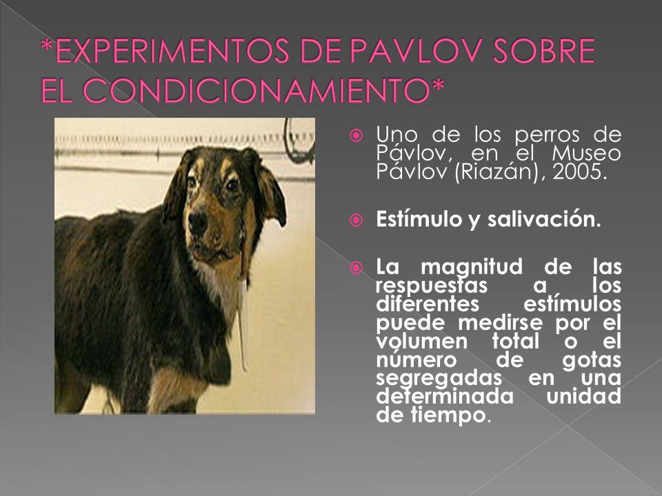 *EXPERIMENTOS DE PAVLOV SOBRE EL CONDICIONAMIENTO*