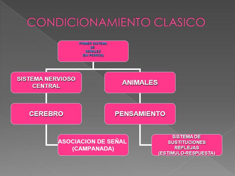 CONDICIONAMIENTO CLASICO