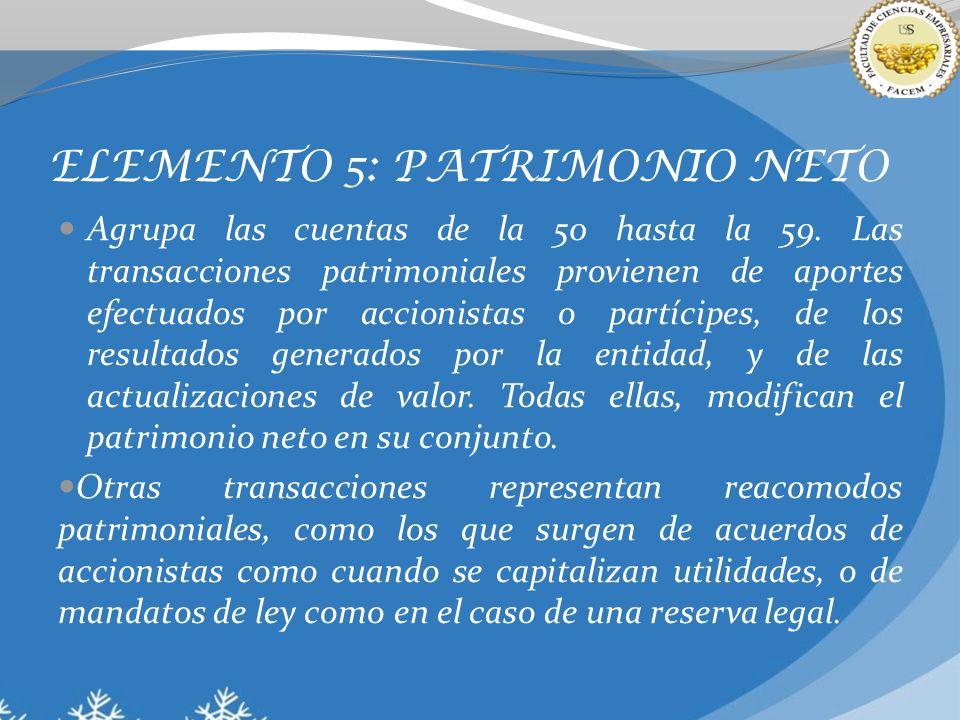ELEMENTO 5: PATRIMONIO NETO