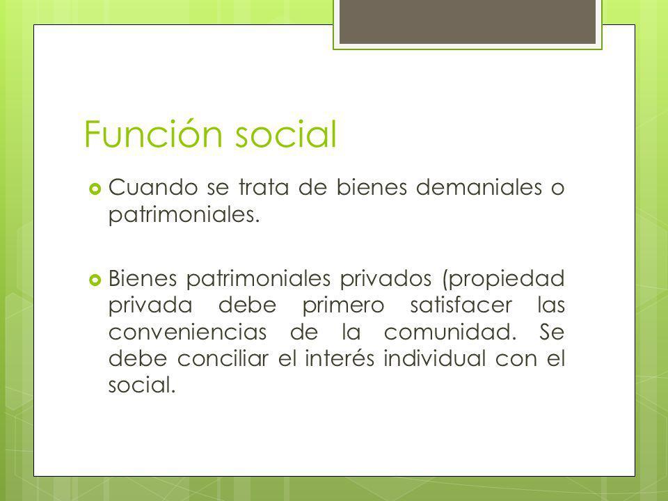 Función social Cuando se trata de bienes demaniales o patrimoniales.