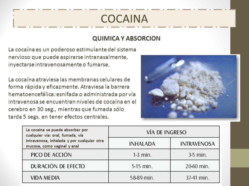 COCAINA QUIMICA Y ABSORCION