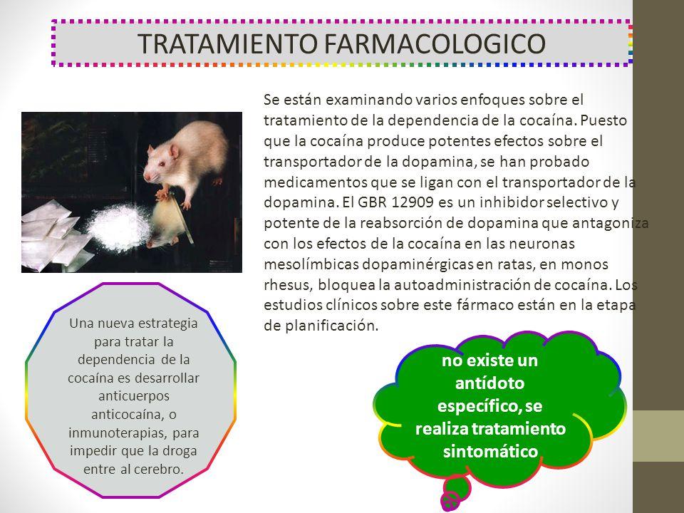 no existe un antídoto específico, se realiza tratamiento sintomático