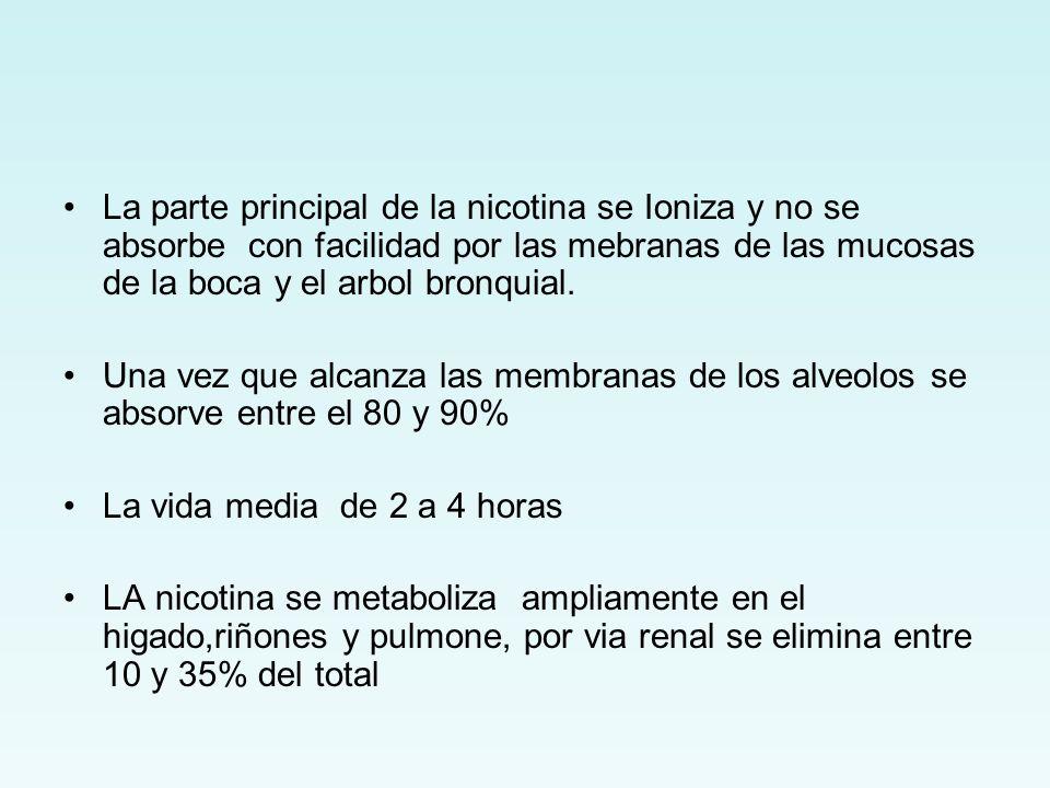 La parte principal de la nicotina se Ioniza y no se absorbe con facilidad por las mebranas de las mucosas de la boca y el arbol bronquial.
