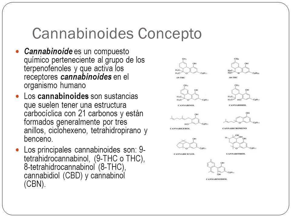 Cannabinoides Concepto
