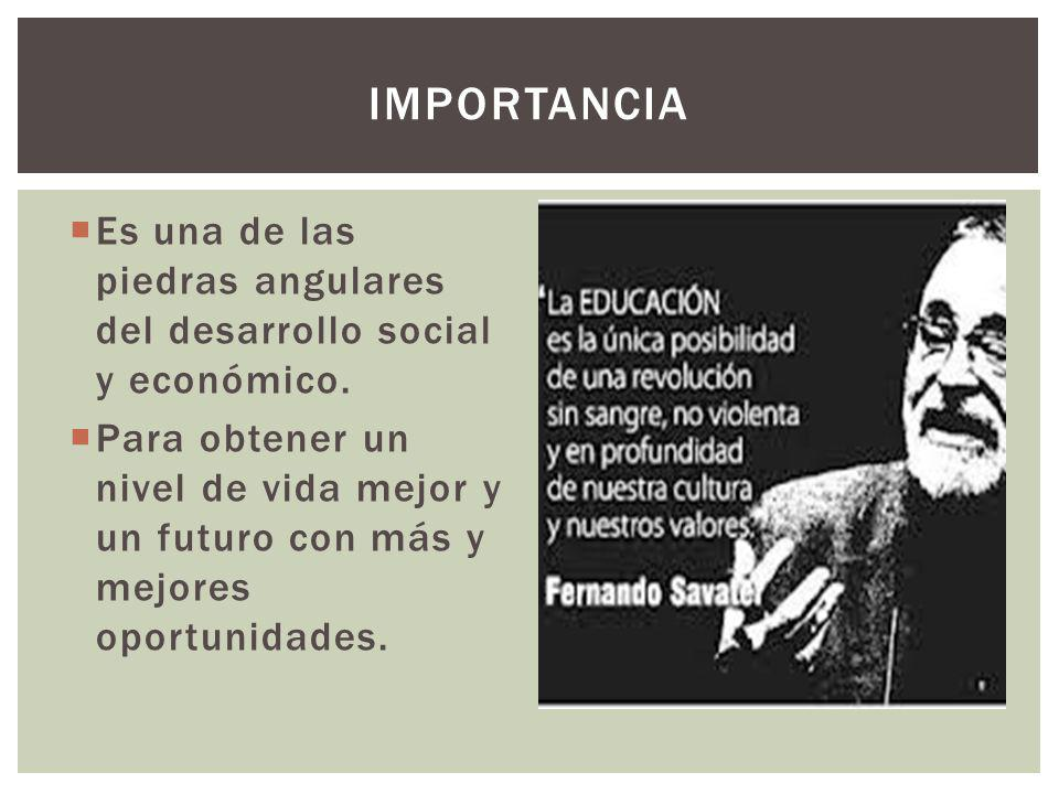 IMPORTANCIA Es una de las piedras angulares del desarrollo social y económico.