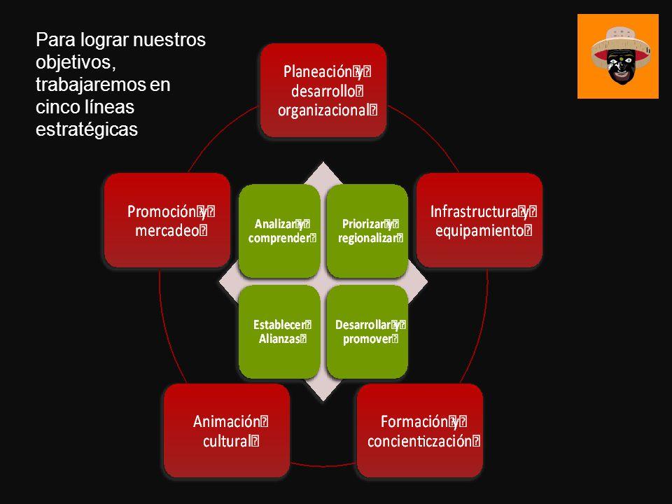 Para lograr nuestros objetivos, trabajaremos en cinco líneas estratégicas