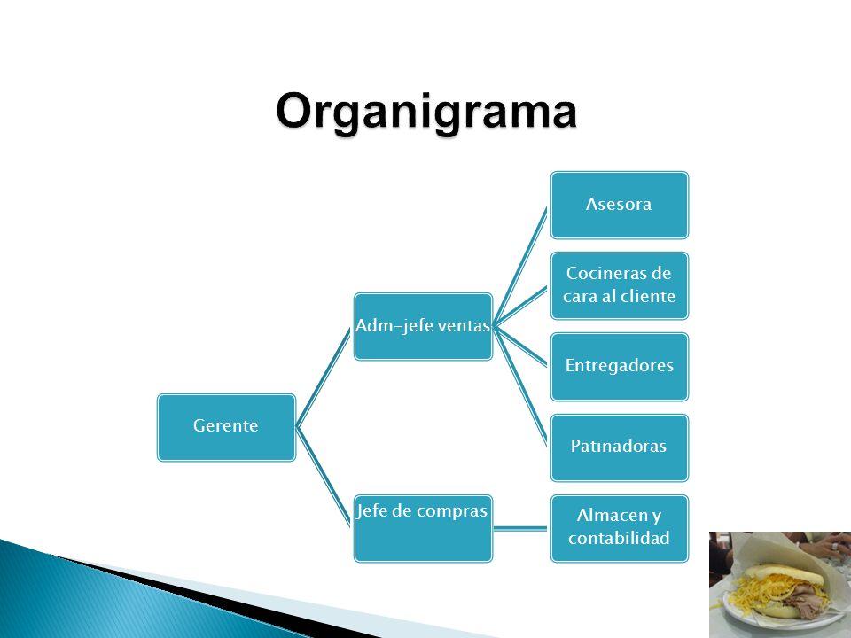 Organigrama Gerente Adm-jefe ventas Asesora
