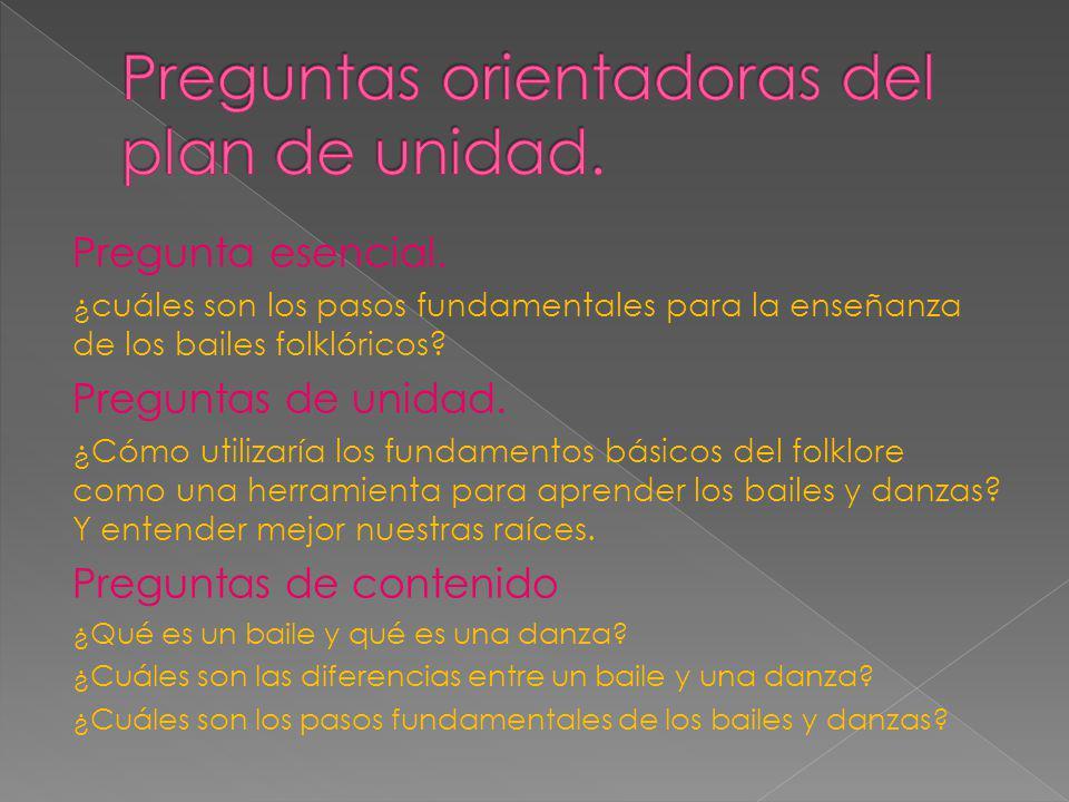 Preguntas orientadoras del plan de unidad.