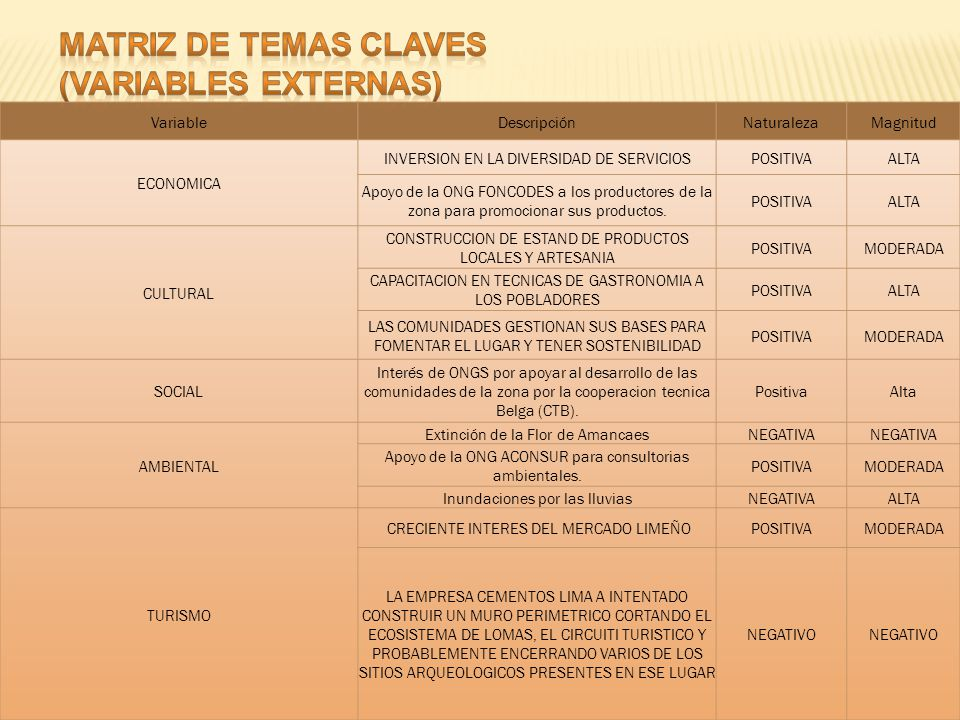 MATRIZ DE TEMAS CLAVES (VARIABLES EXTERNAS) Variable Descripción