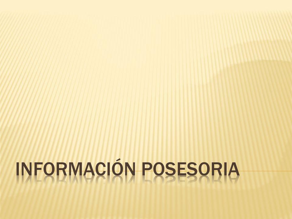 Información Posesoria