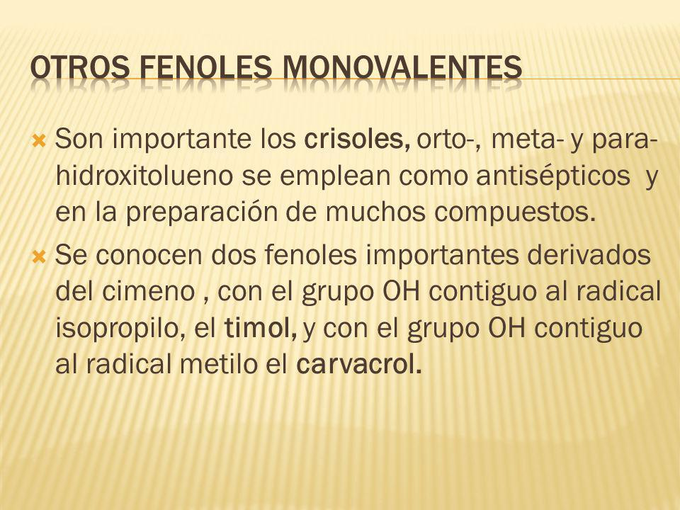 Otros Fenoles monovalentes