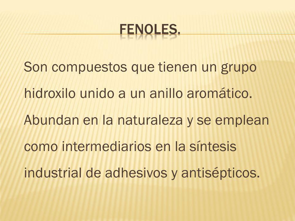 FENOLES.
