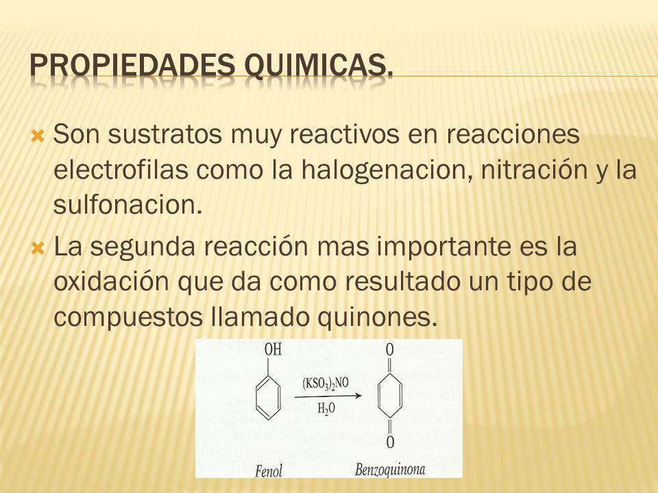 Propiedades quimicas. Son sustratos muy reactivos en reacciones electrofilas como la halogenacion, nitración y la sulfonacion.
