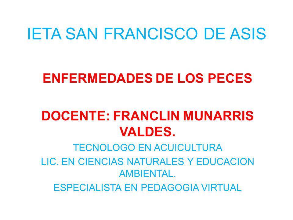 IETA SAN FRANCISCO DE ASIS
