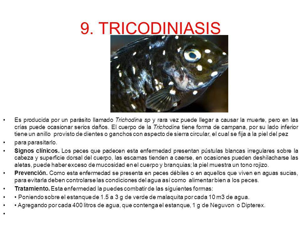 9. TRICODINIASIS