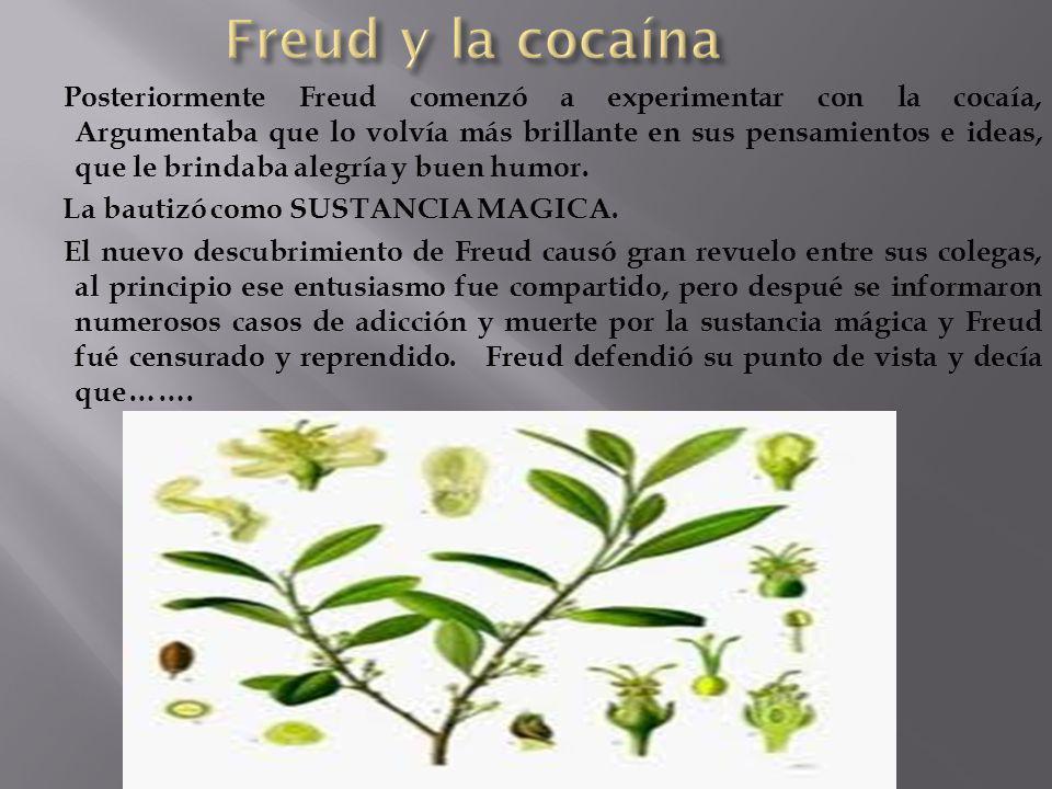 Freud y la cocaína
