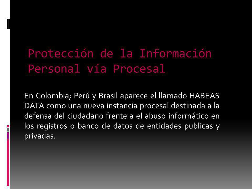 Protección de la Información Personal vía Procesal