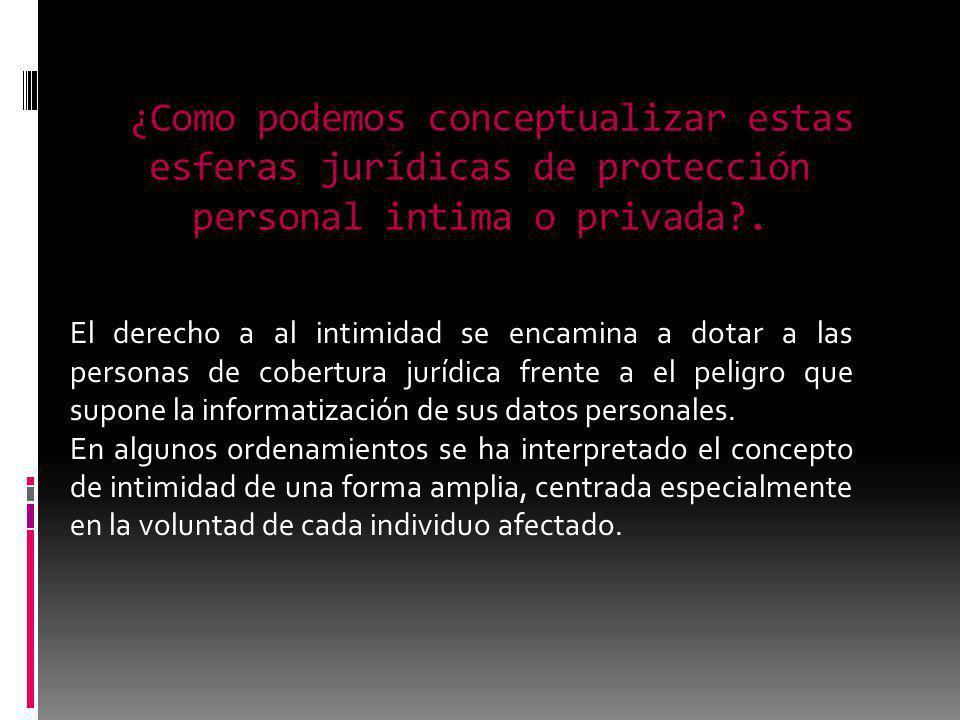 ¿Como podemos conceptualizar estas esferas jurídicas de protección personal intima o privada .