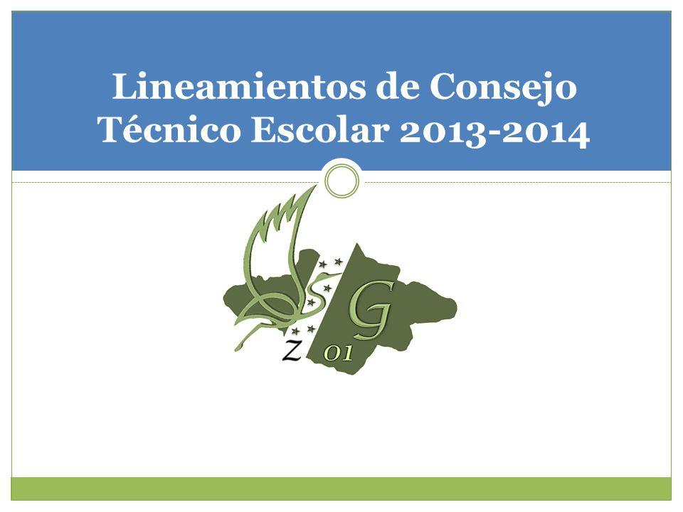 Lineamientos de Consejo Técnico Escolar 2013-2014