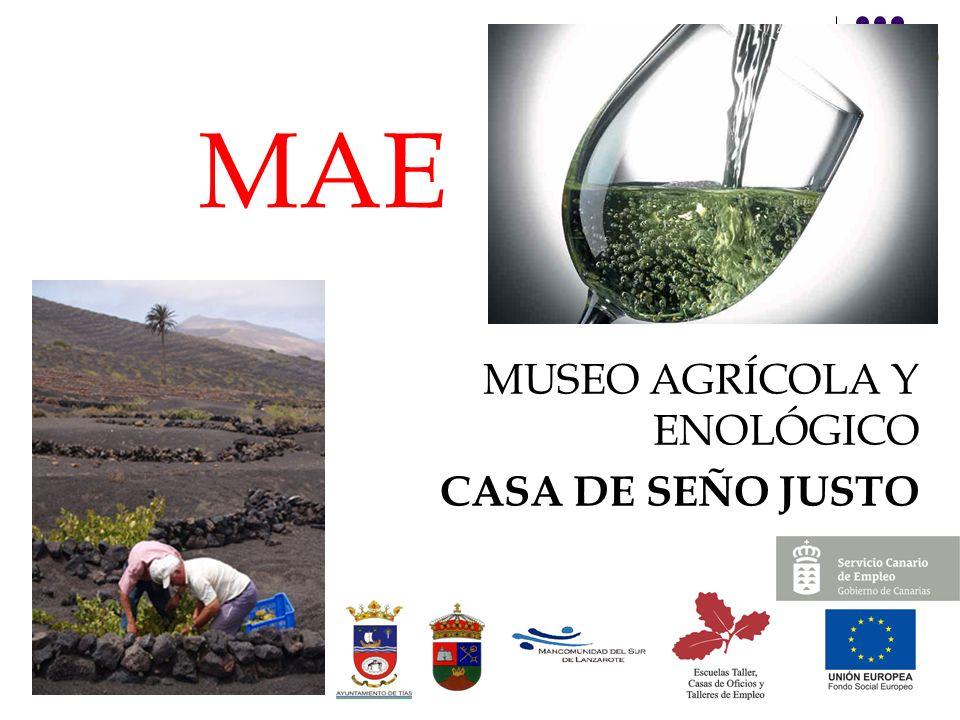 MAE MUSEO AGRÍCOLA Y ENOLÓGICO CASA DE SEÑO JUSTO