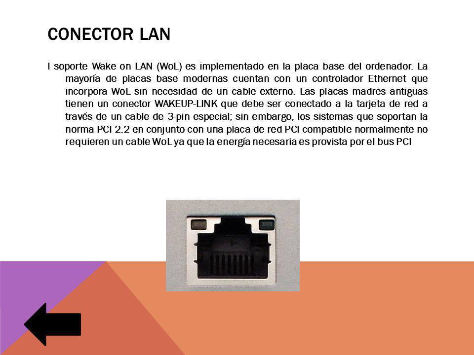 Conector lan