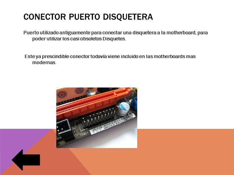 Conector puerto disquetera