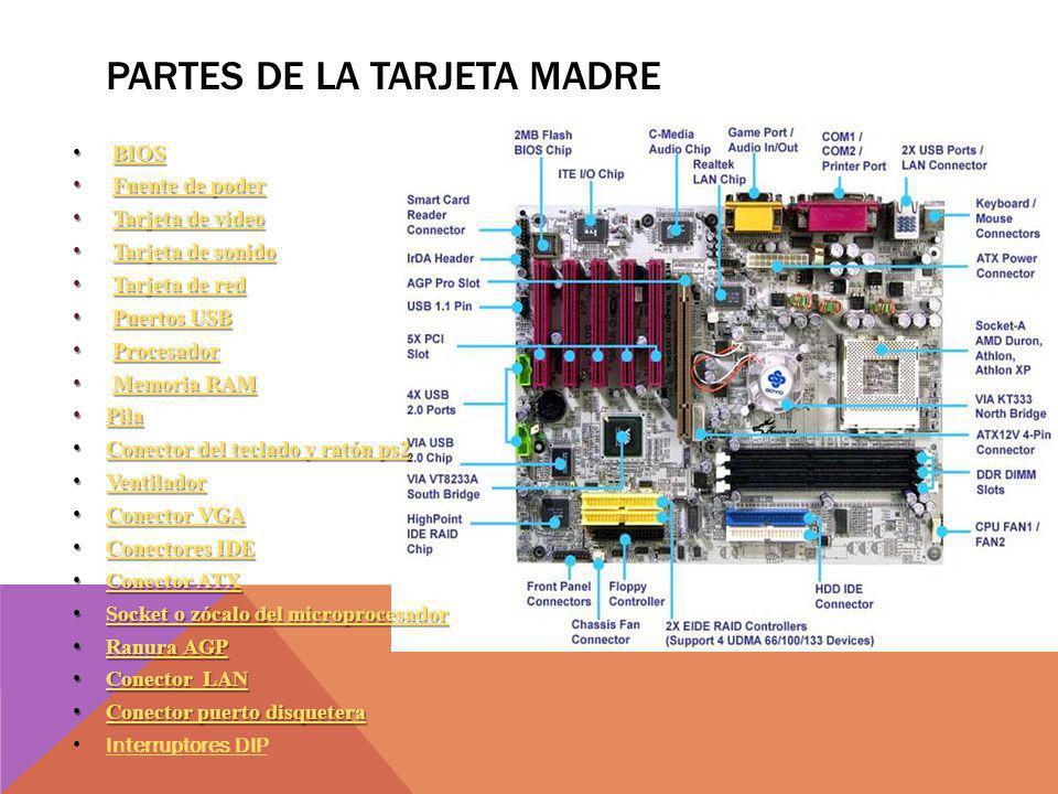PARTES DE LA TARJETA MADRE