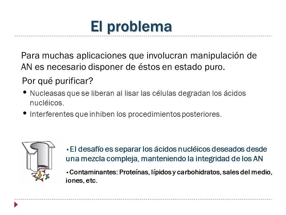 El problema Para muchas aplicaciones que involucran manipulación de AN es necesario disponer de éstos en estado puro.