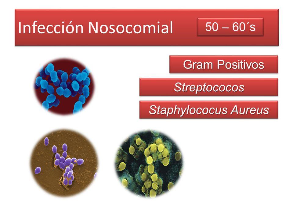 Infección Nosocomial 50 – 60´s Gram Positivos Streptococos
