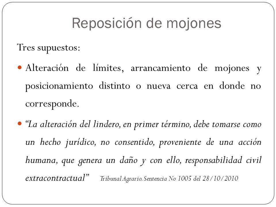 Reposición de mojones Tres supuestos:
