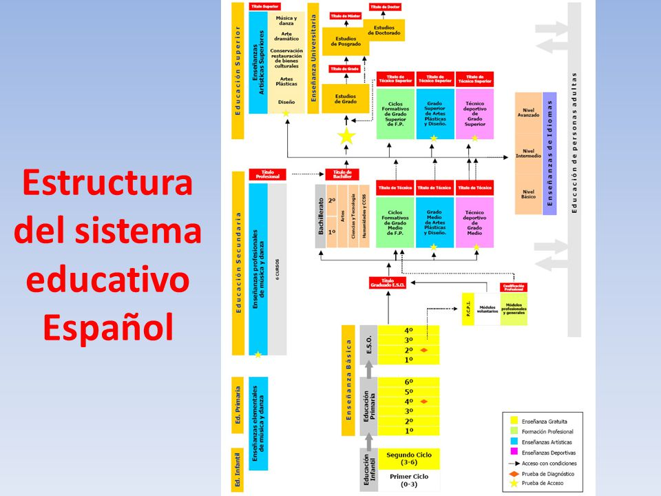 Estructura del sistema educativo Español