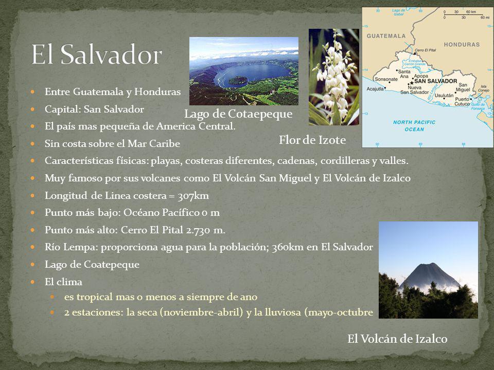 El Salvador Lago de Cotaepeque Flor de Izote El Volcán de Izalco