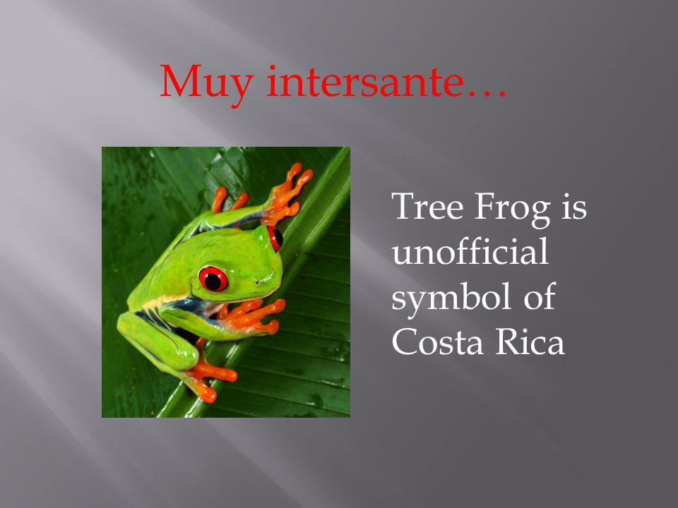 Muy intersante… Tree Frog is unofficial symbol of Costa Rica