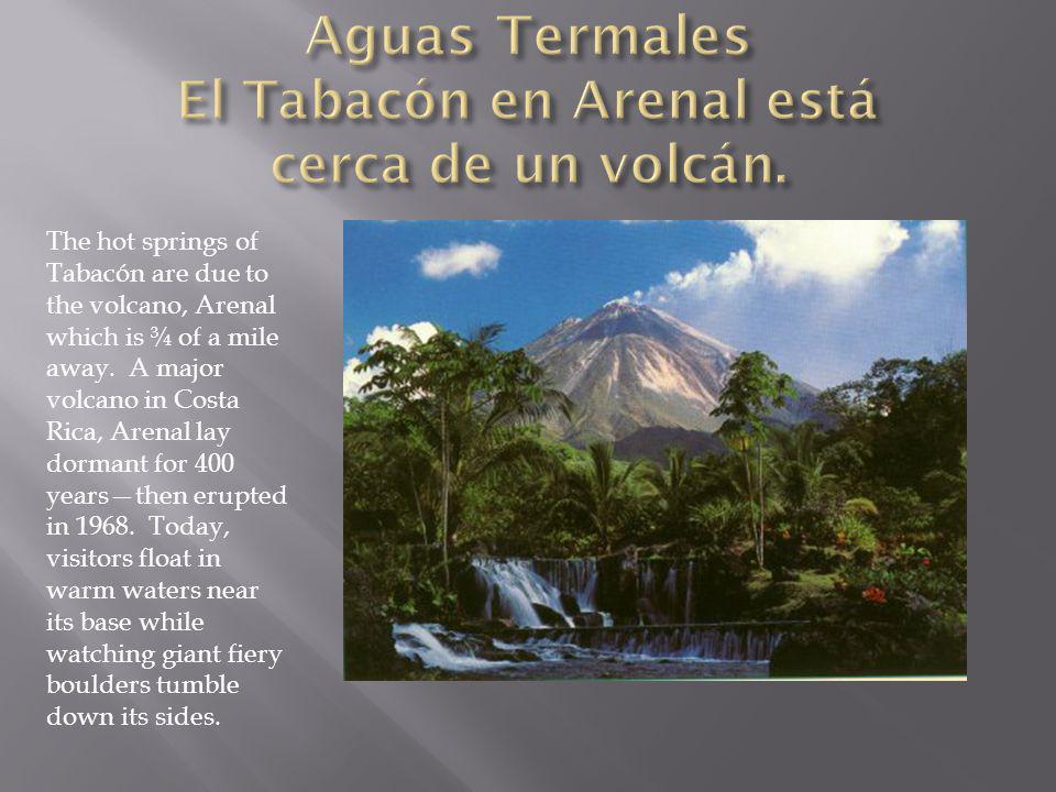 Aguas Termales El Tabacón en Arenal está cerca de un volcán.