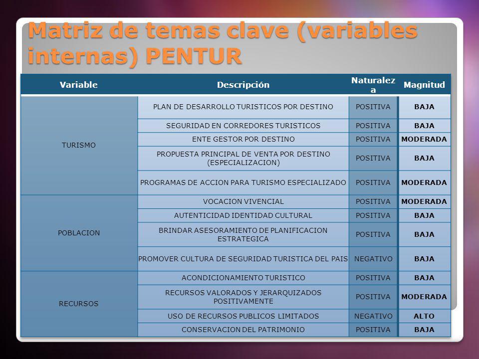 Matriz de temas clave (variables internas) PENTUR