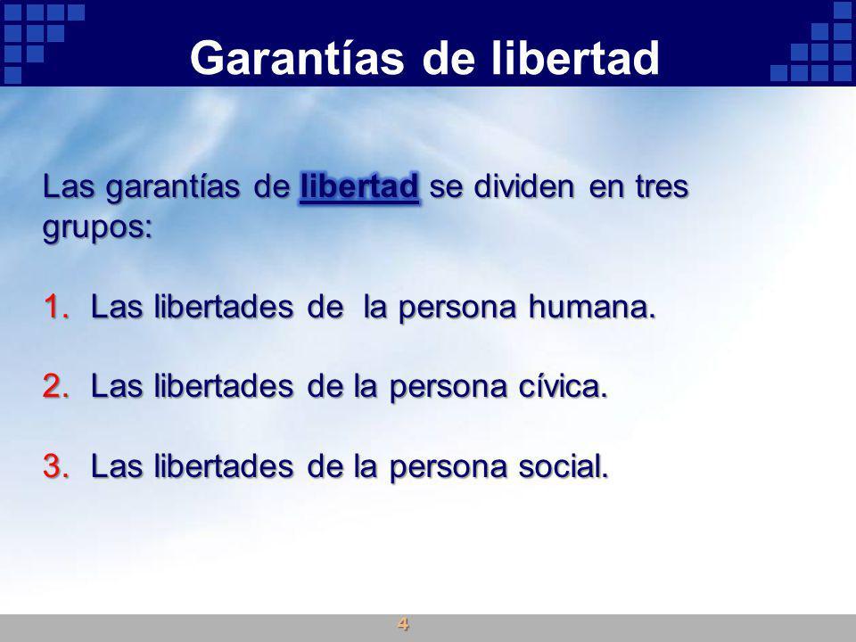 Garantías de libertad Las garantías de libertad se dividen en tres grupos: Las libertades de la persona humana.