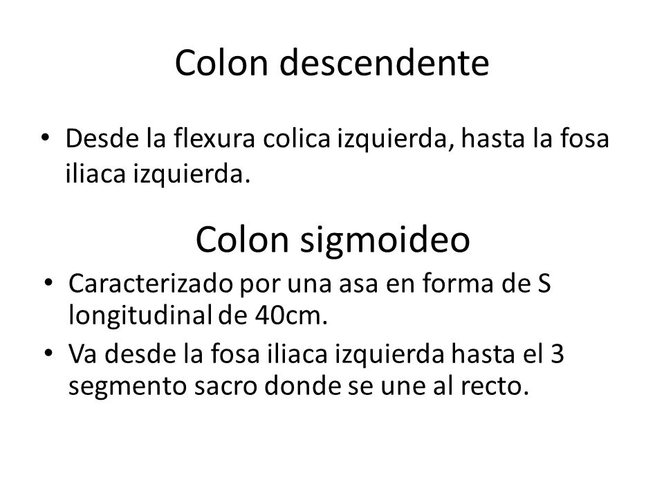 Colon descendente Colon sigmoideo