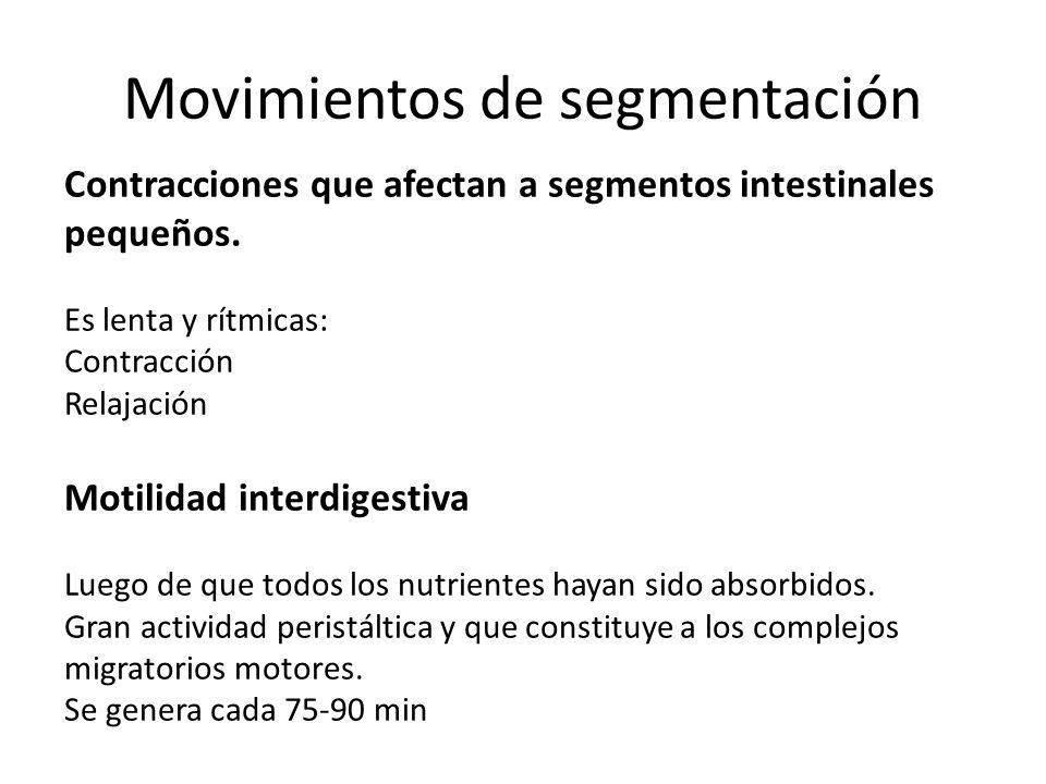 Movimientos de segmentación