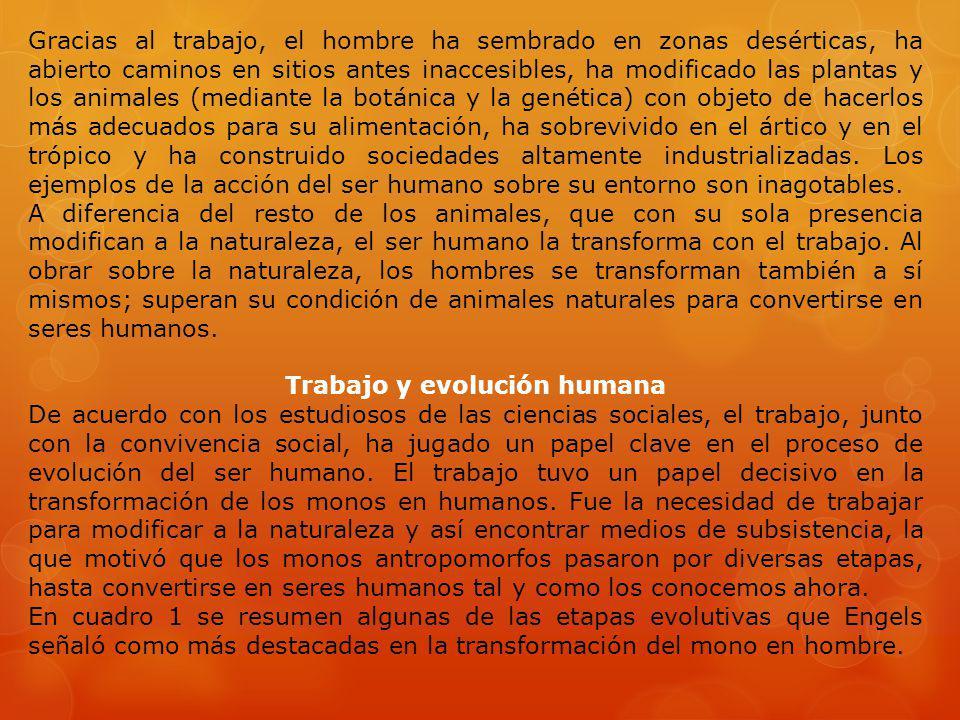 Trabajo y evolución humana