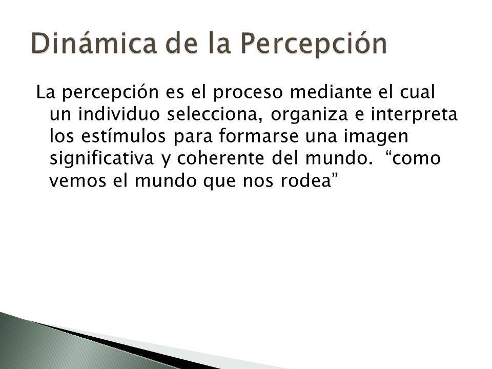 Dinámica de la Percepción
