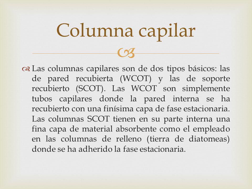 Columna capilar